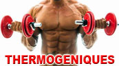 thermogeniques