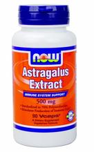 Now Foods Astragalus Extract, 500