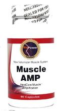 AMP Muscle # # dur amplification