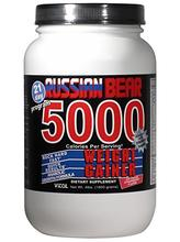 Vitol Bear russe 5000 gainer