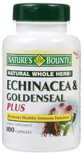 Echinacea Bounty Nature &